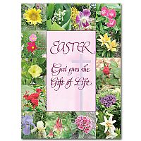 Inspirational cards and gifts for easter send a message of hope easter god gives the gift of life negle Image collections